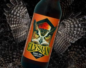 The Night Owl Pumpkin Ale from Elysian Brewing in Seattle, WA